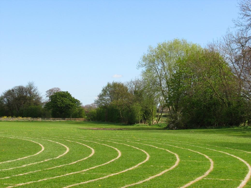 Running_Track - grass